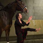 Photos du Spectacle Danse avec les chevaux