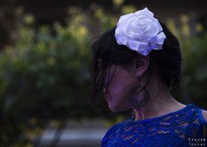Portrait d'une danse de flamenco