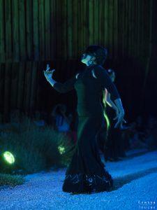 Danse expressive du flamenco