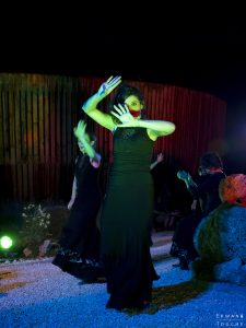 Danseuses de Flamenco