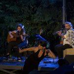 Photographie du concert Anapaco